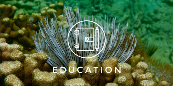 education_hover_small