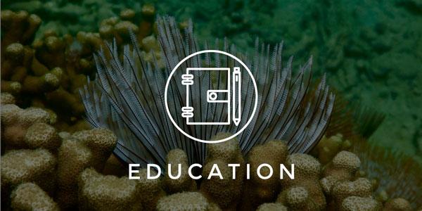 education_small