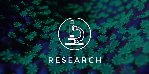 research_small